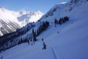 Skintrack Whistler Backcountry Skiing
