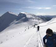 Alpaca Ridge Traverse, Coquihalla Ski Touring