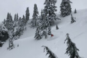 Powder backcountry skiing in Cypress Park