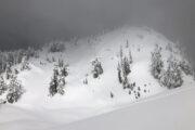 Fresh tracks on Tim Jones peak, Mt Seymour