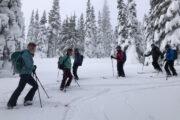 Mount Seymour Backcountry Skiing Dawn Patrol Club